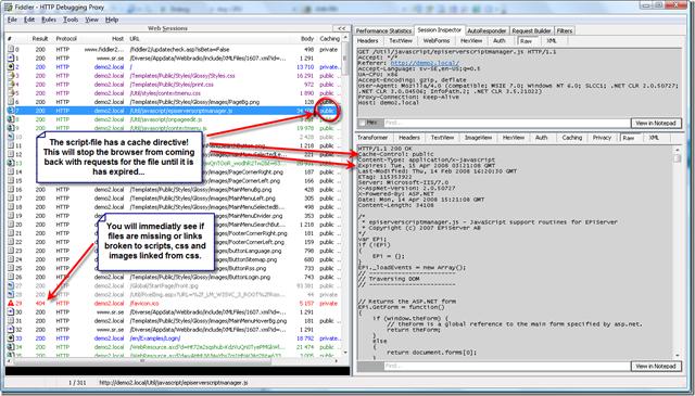 Cached EPiServer License Violation script error